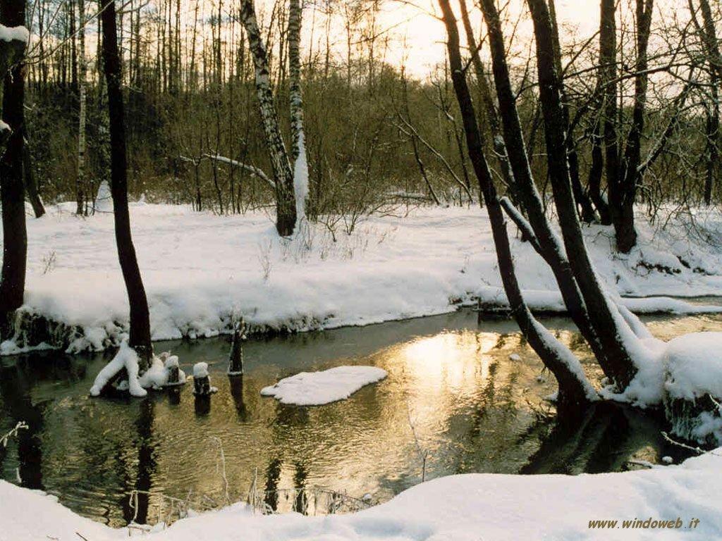 Pomeriggio d inverno oltre il cancello for Immagini inverno sfondi