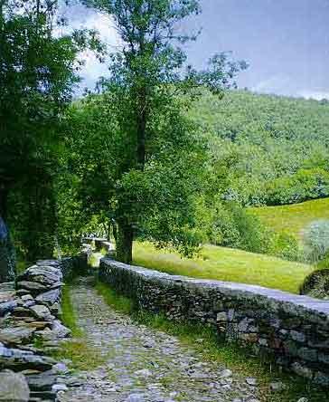 sentiero11.jpg