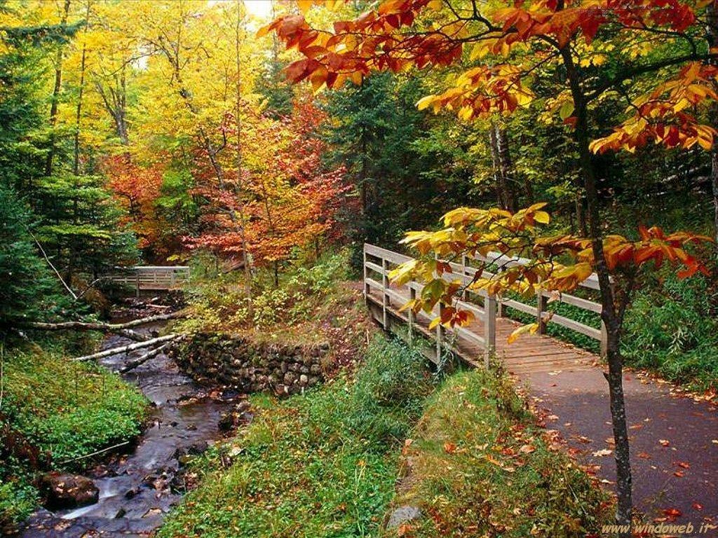 La magia dell autunno oltre il cancello for Foto per desktop gratis autunno