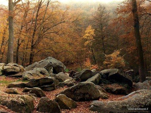 foto_autunno_314.jpg