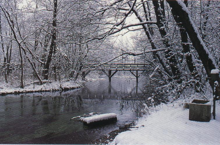 inverno al parco