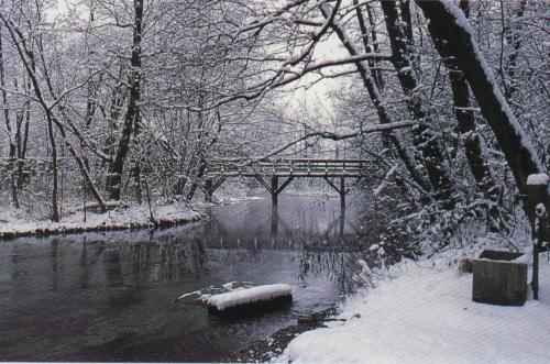 030800-parco-dinverno.jpg