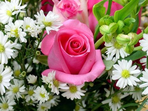 fiori_2.jpg