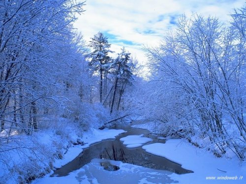 foto_inverno_317.jpg