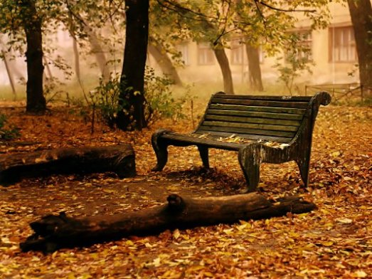 autunnobb91.jpg