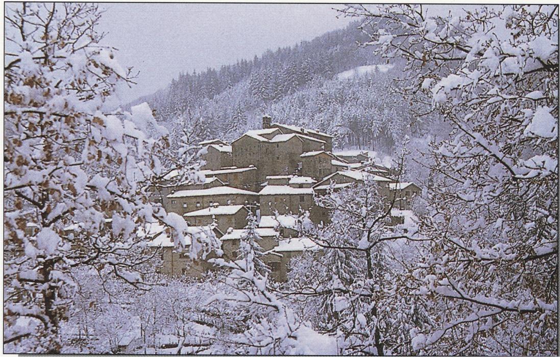 Paesaggio d inverno oltre il cancello for Sfondi desktop inverno montagna