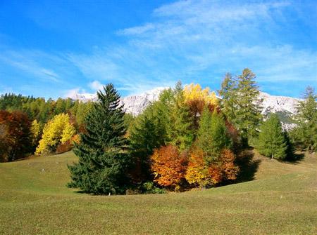 Dolomiti in autunno oltre il cancello for Foto per desktop gratis autunno
