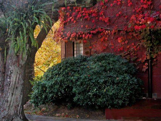 colori-autunno.jpg