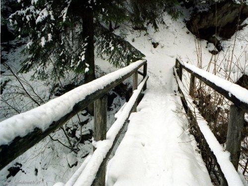 foto_inverno_323