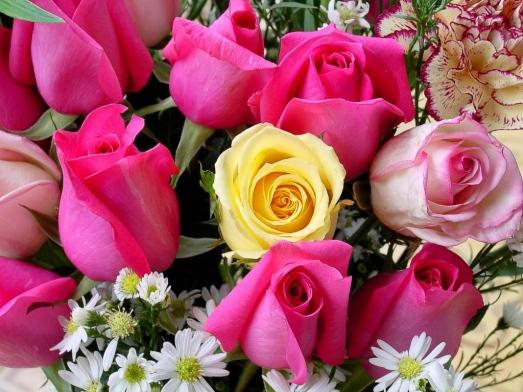 fiori_1