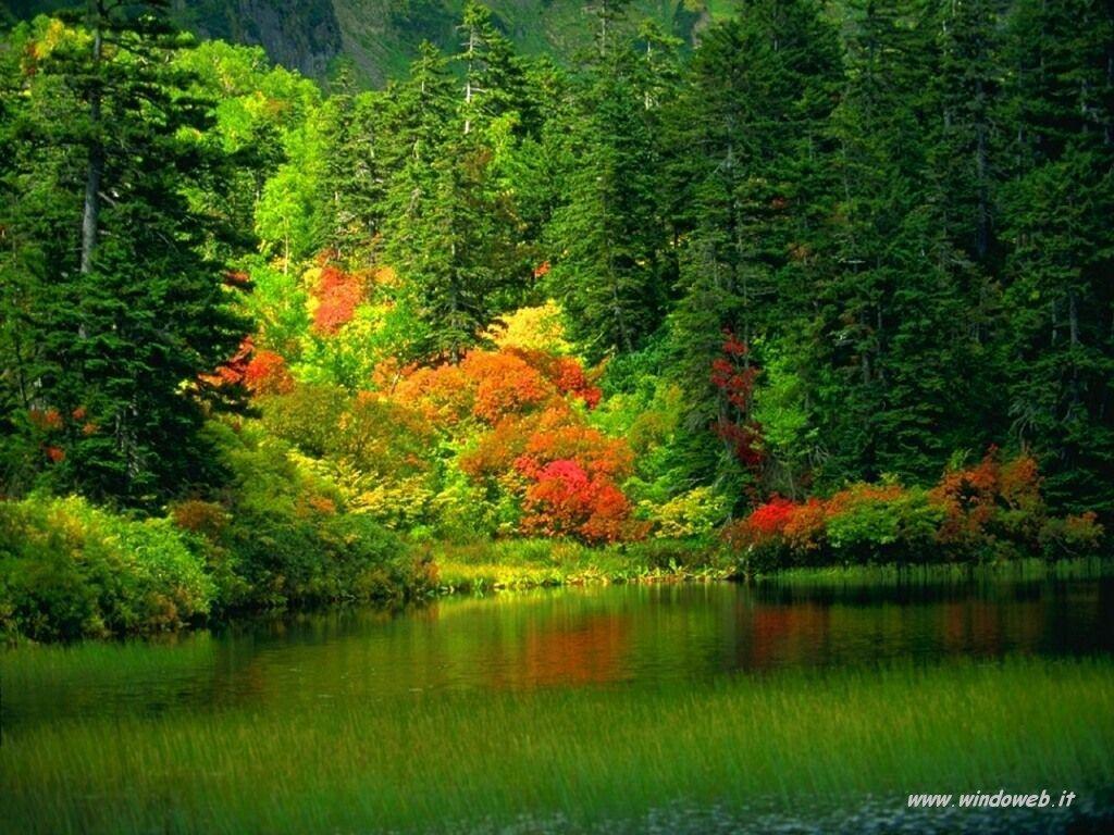 foto_autunno_323