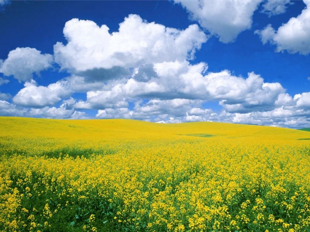 Vento di maggio, brezza di primavera: è il sereno abbandono del