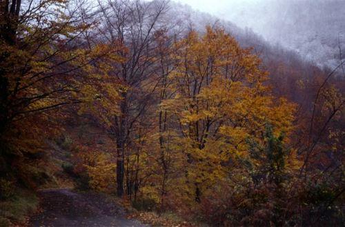 autunno-inverno-8