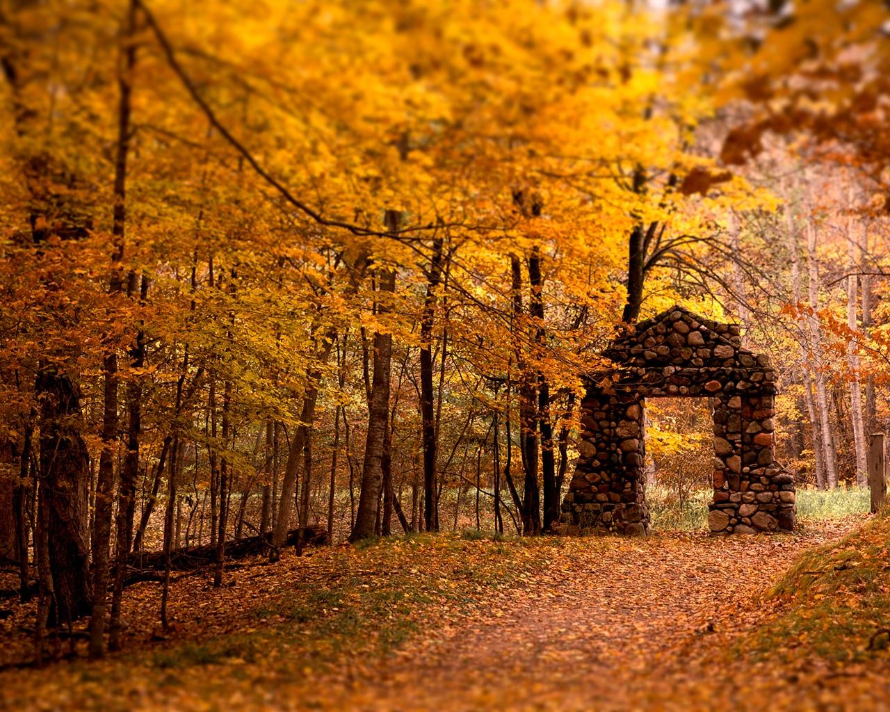 Super Dissolvenze d'autunno | Oltre il cancello NU92