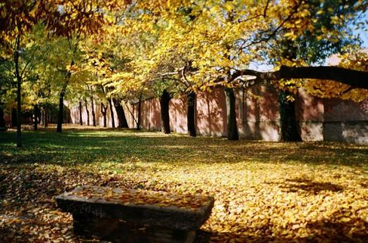 autunno6