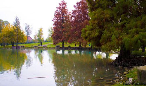 autunno-al-parco-amendola