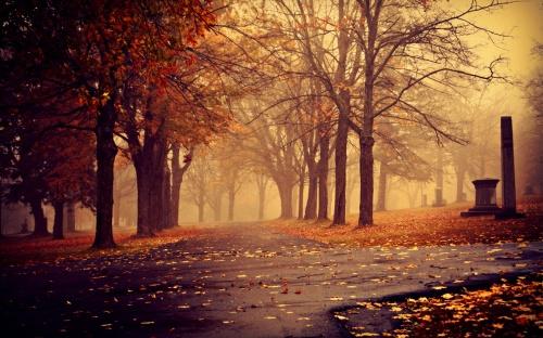 411986_Autumn_Park_Trees_1920x1200_(www.GdeFon.ru)