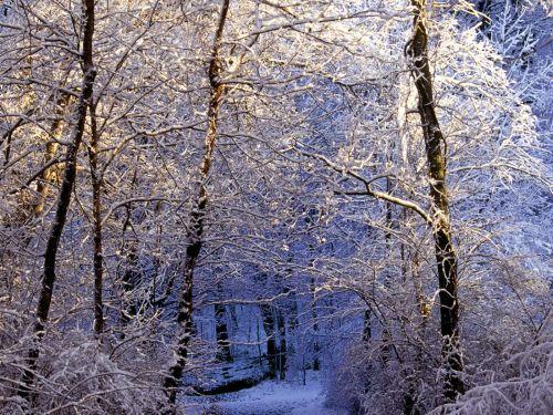 inverno10
