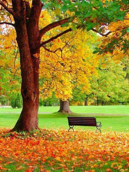autunno21
