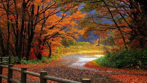 autunno26