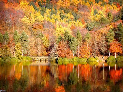 autunno29