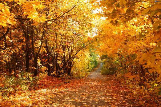 autunno30