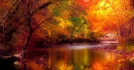 autunno23