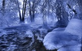 Winter_wallpapers_Forest_River_014405_