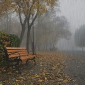 rain-1-gap