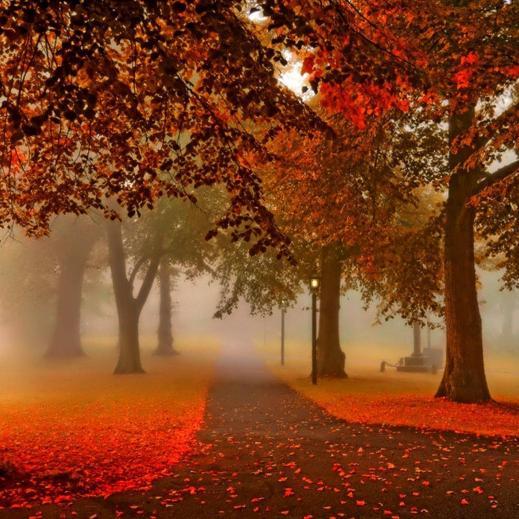 autunno27